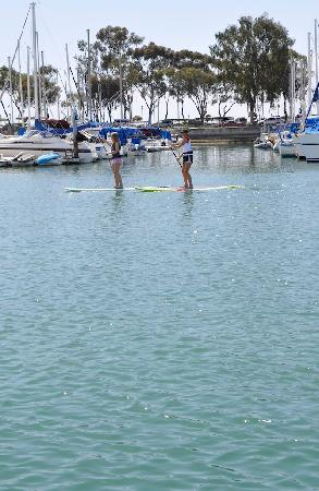 Stand Up Paddleboarding in Dana Point Harbor