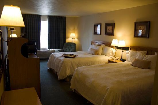 Hampton Inn Helena: Room 320