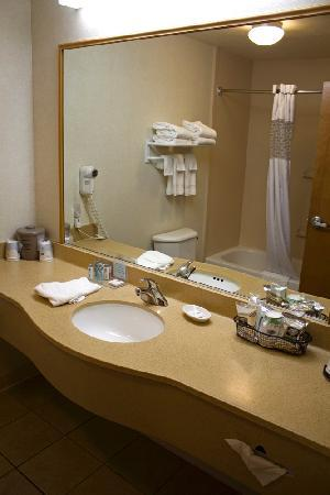Hampton Inn Helena: Room 320 Bathroom