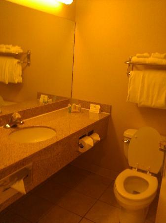Holiday Inn Overland Park-Conv Ctr: Bathroom