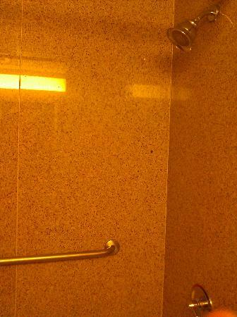 Holiday Inn Overland Park-Conv Ctr: Shower w/tub