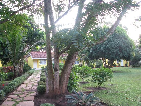 Masindi Hotel : Our cabin
