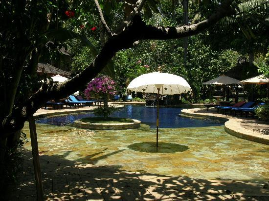 Rambutan Boutique Hotel: Pool
