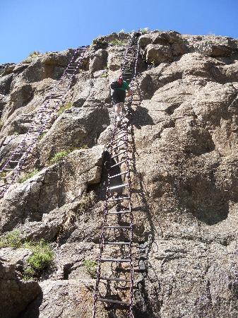 Montusi Mountain Lodge: The chain ladder!