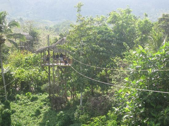 Punta Cana, République dominicaine : Ziplines were awesome and very safe