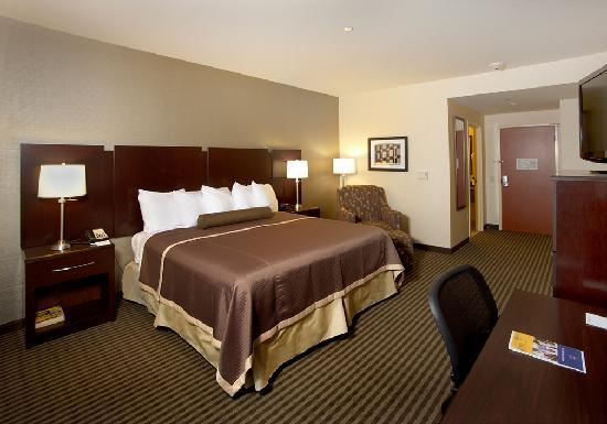 Best Western Plus The Inn at King of Prussia: Superior King Room