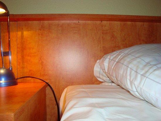 Albatros Airport Hotel: ALBATROS HOTEL BED BUGS