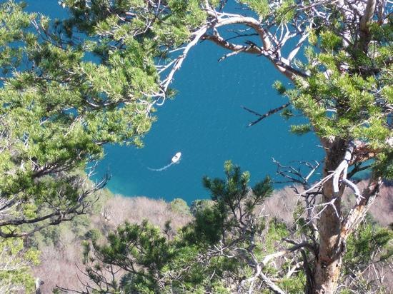 Seelisberg, Suisse : vieuw in forest near hotel