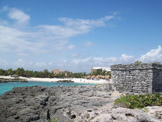 akumal dating site Mayan ruins there are several small archeological close to akumal,  the nearest large site to akumal is in  along with the remains of many animals dating back.