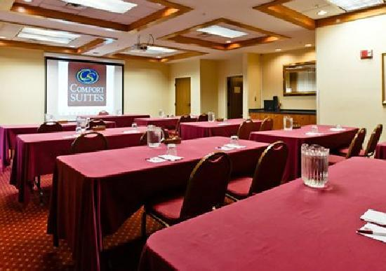 Ramada Denver International Airport: Meeting Room