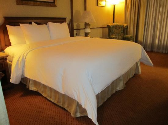 Hilton Princess San Pedro Sula: king bed