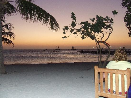Moomba Beach Bar & Restaurant: View from our table on the beach
