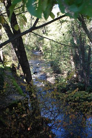 Jack London Lodge: The Brook that runs behind the lodge