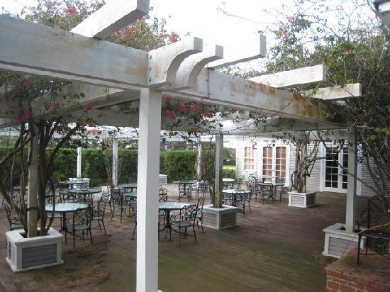 Jacaranda Inn: Potential Outdoor Dining Area