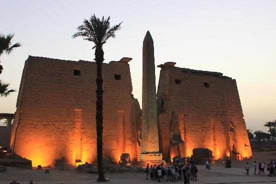 Sawa4 Tours - Private Day Tours: Luxor temple at night