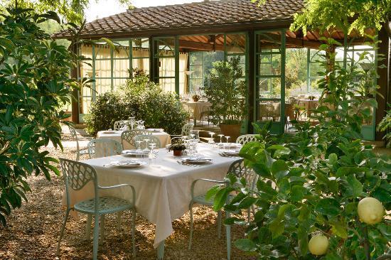 Montaione, Italy: Vi piacerebbe cenare immersi nei limoni?