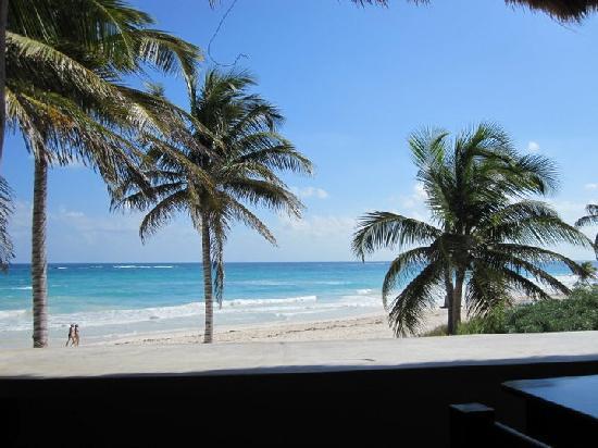Halocline Diving: Tulum beach