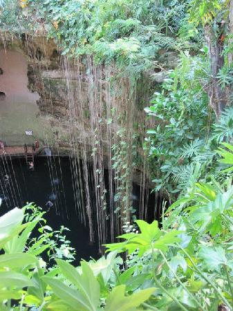 Halocline Diving: Cenote Ik Kil