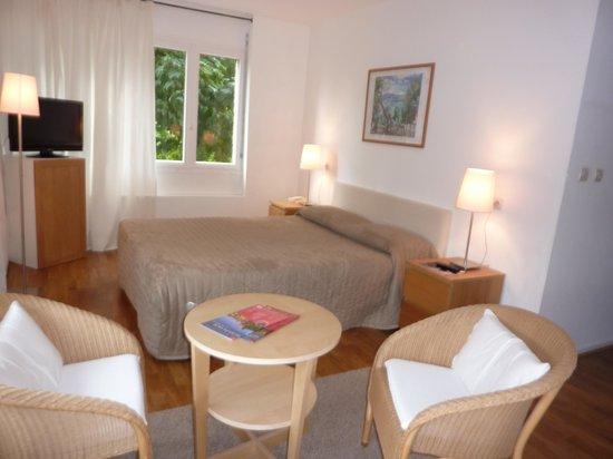 Hotel l'Ermitage : Chambre côté jardin Hôtel l'Ermitage Le Puy en Velay
