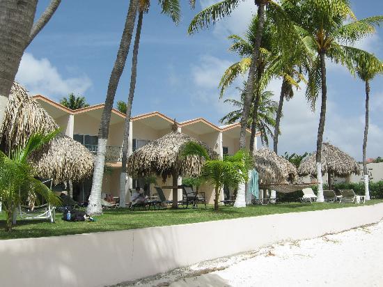 Row of beachside rooms picture of divi aruba all for Divi aruba and tamarijn aruba