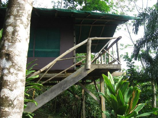 ‪‪Guaria de Osa Ecolodge‬: Abode‬