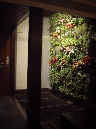 Hansar Bangkok Hotel: 壁の花