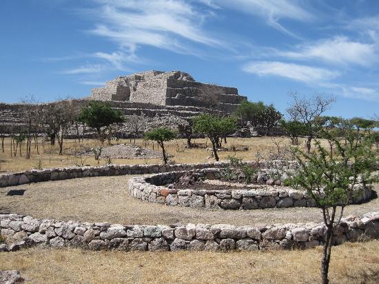 Cañada de La Virgen: View of pyramid from native plants display area
