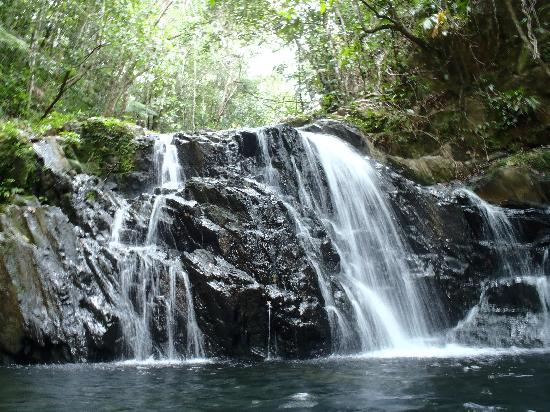 Hamanasi Adventure and Dive Resort: Top of the Mayflower hike is a waterfall pool you can swim in