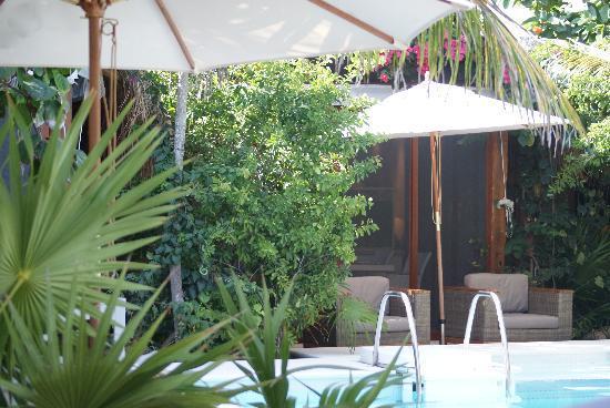 Sahara Cafe: the pool etc.