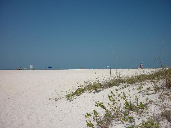 Sand Key Park: View as you enter from parking area
