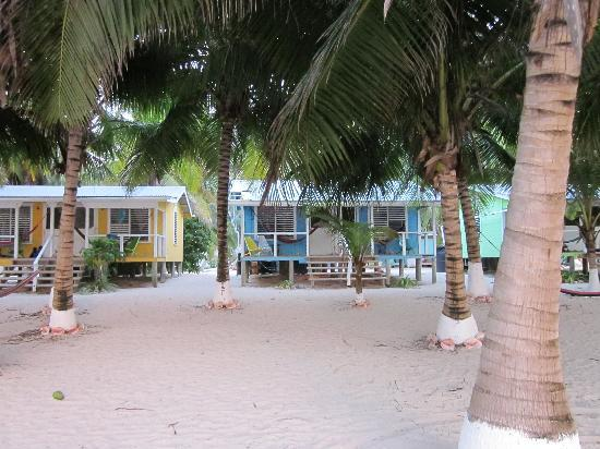 Tobacco Caye Lodge: My cabin