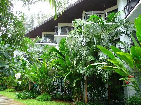 ในยาง บีช รีสอร์ท: tropical wing