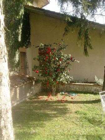 Hotel Ismaele : il gazebo 2