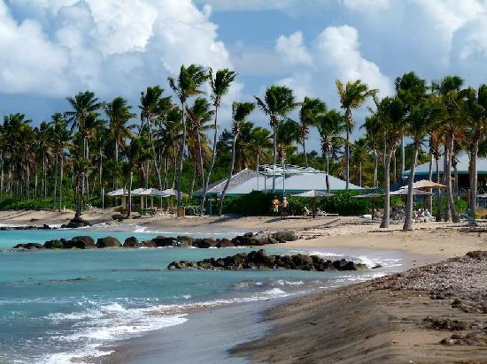 Nisbet Plantation Beach Club: The beach