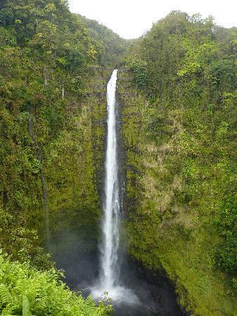 Kailua-Kona, Hawaï: Akaka Falls