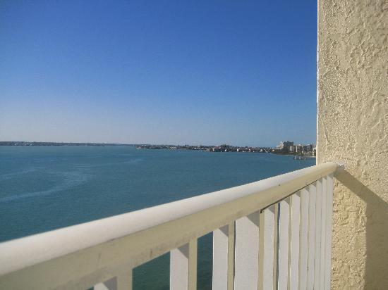 View From Balcony Tampa Bay Picture Of Clearwater Beach Marriott