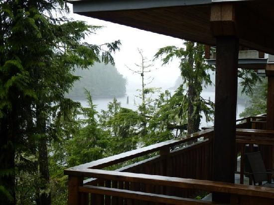 Reef Point Cottages: The view from our back deck