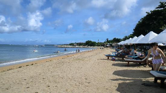 Gili air foto di manta dive gili air resort gili air - Manta dive gili air ...