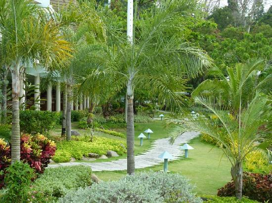 Camayan Beach Resort and Hotel: The garden