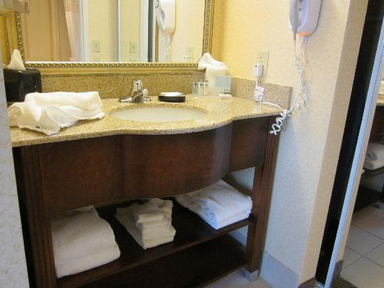 Hampton Inn & Suites Ephrata - Mountain Springs: Sink and Vanity