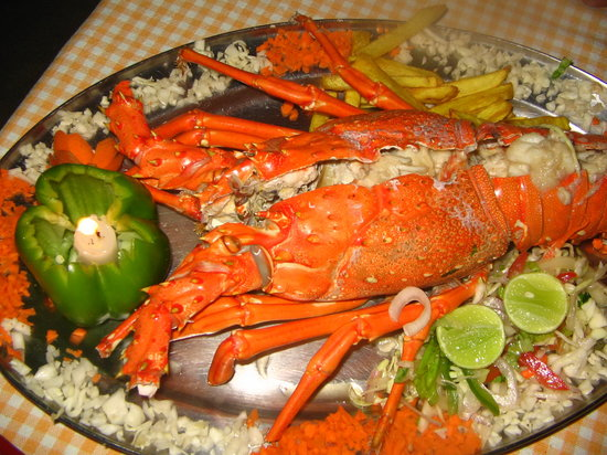 Venus Beach Shack: BEST FOOD!!!