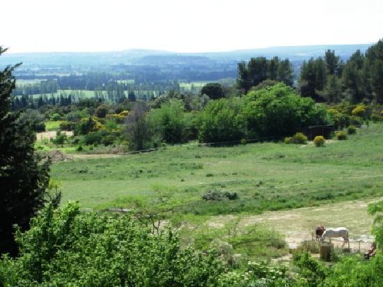 Domaine de Clairefontaine : point de vue