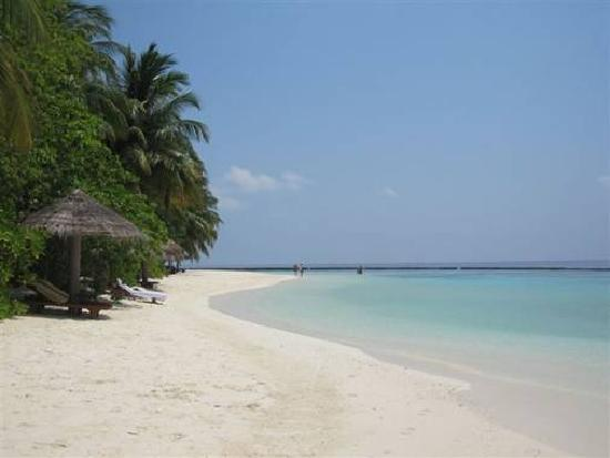 Baros Maldives: Another beach view