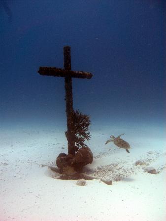 JADS Dive Center: Cross sunk at Baby Beach Reef