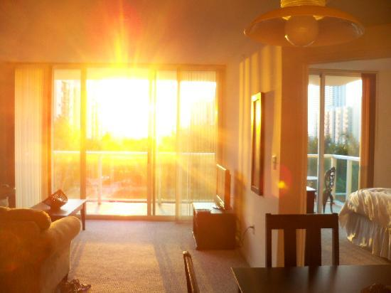 Residences at Intracoastal Yacht Club: Living Room/Bedroom with Sun Shining