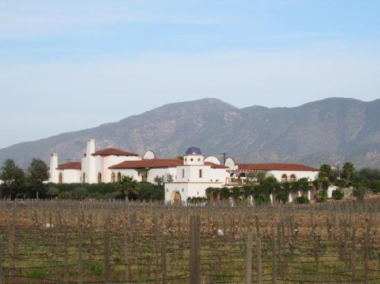 Adobe Guadalupe Vineyards & Inn: Adobe Guadalupe Vineyard & Hotel