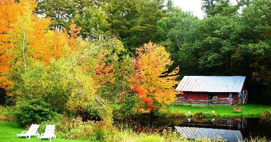 Cranmore Mountain Lodge Bed and Breakfast: Tennis court and hiking trails are behind the barn