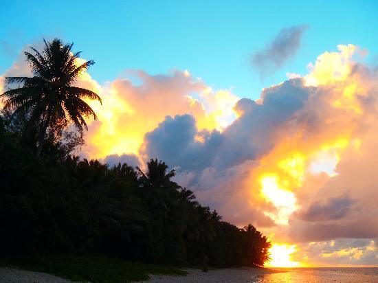 Makayla Palms: Sunrise