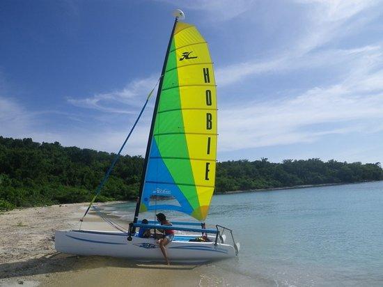 Little Boat Sailing
