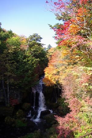 Ryuzu Waterfall: 紅葉